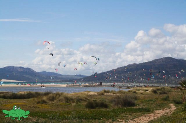 kite laguna kiting Tarifa